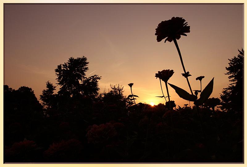 Sonnenaufgang....