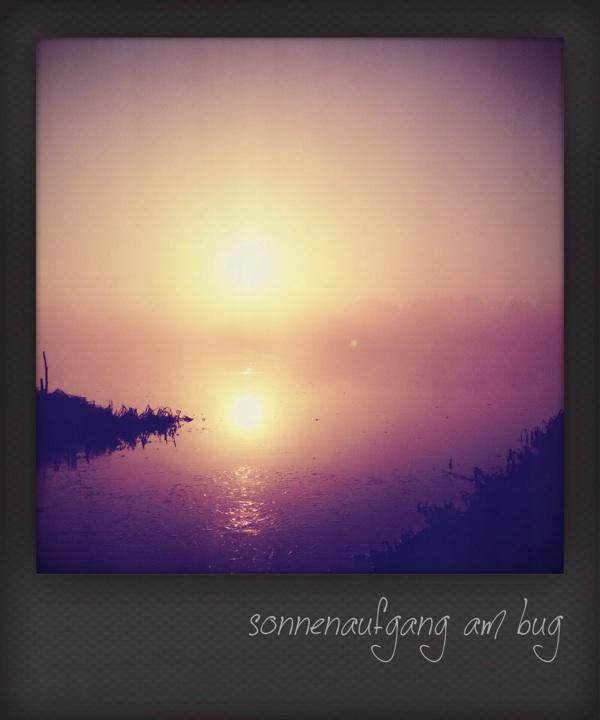 Sonnenaufgang am Bug / Polen