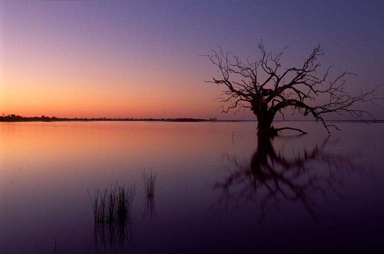 Sonnenaufgang am Coongie Lake