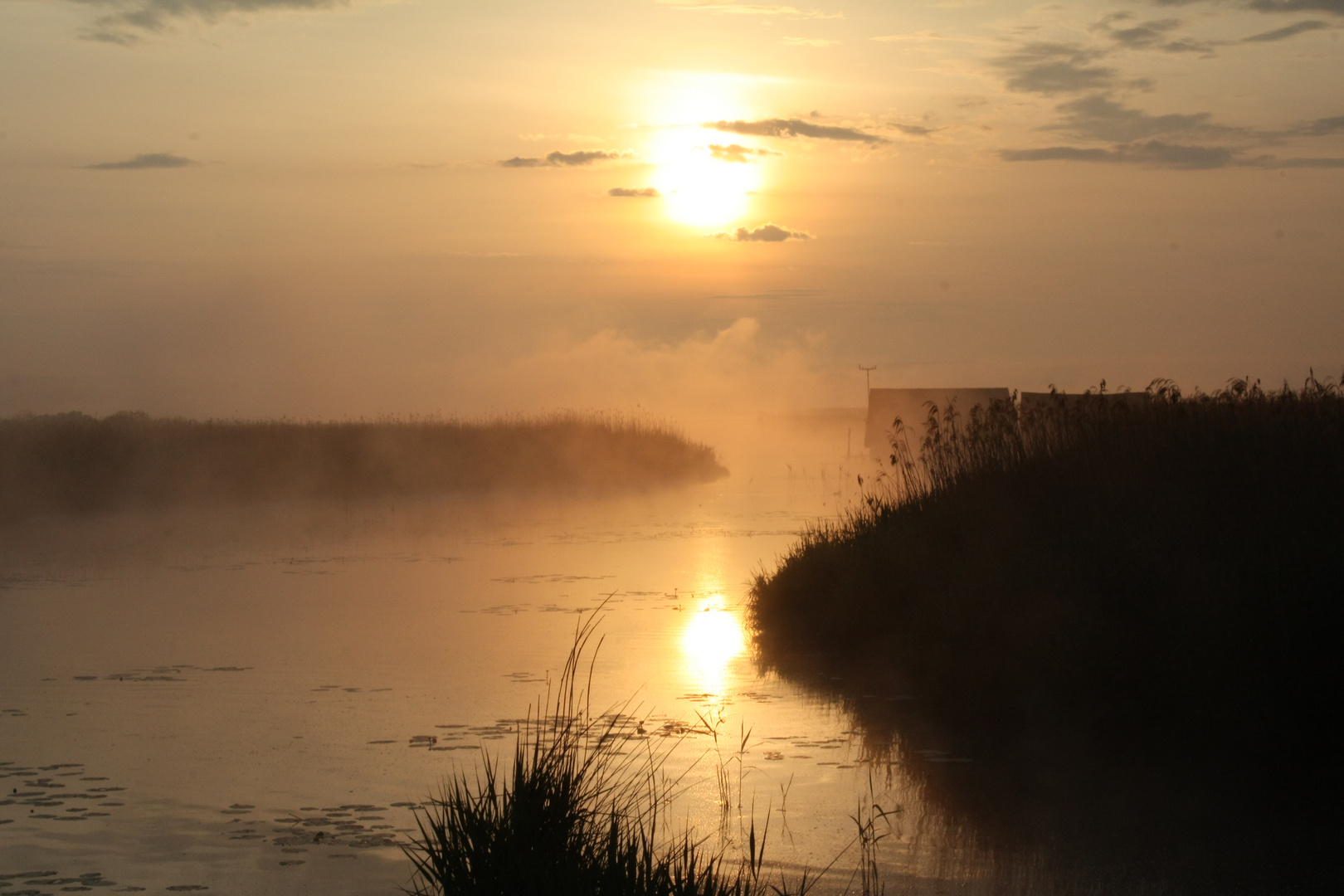 Sonnenaufgang am Federsee 2