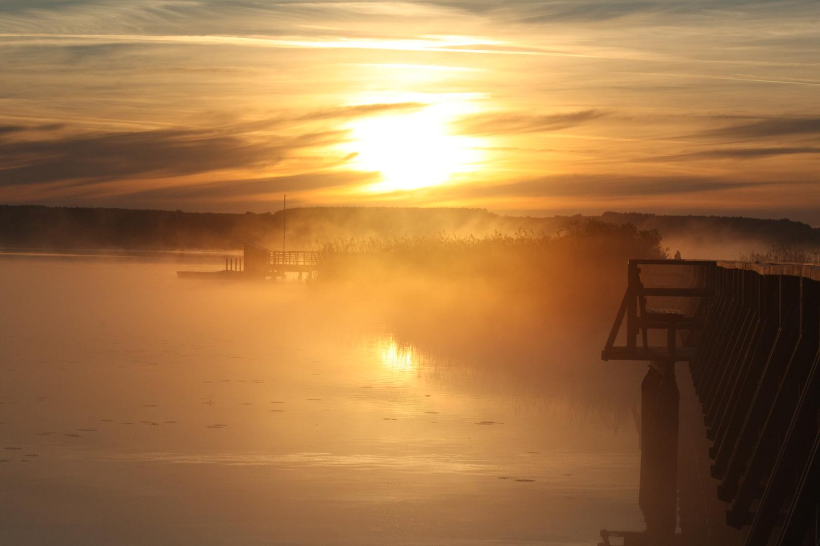 Sonnenaufgang am Federsee 4