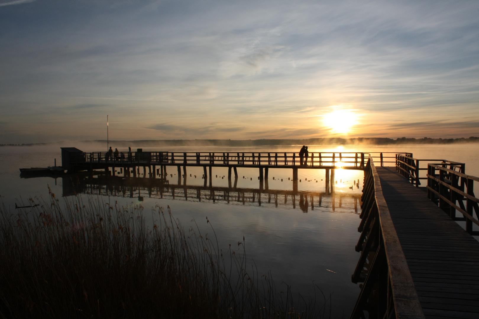 Sonnenaufgang am Federsee 5