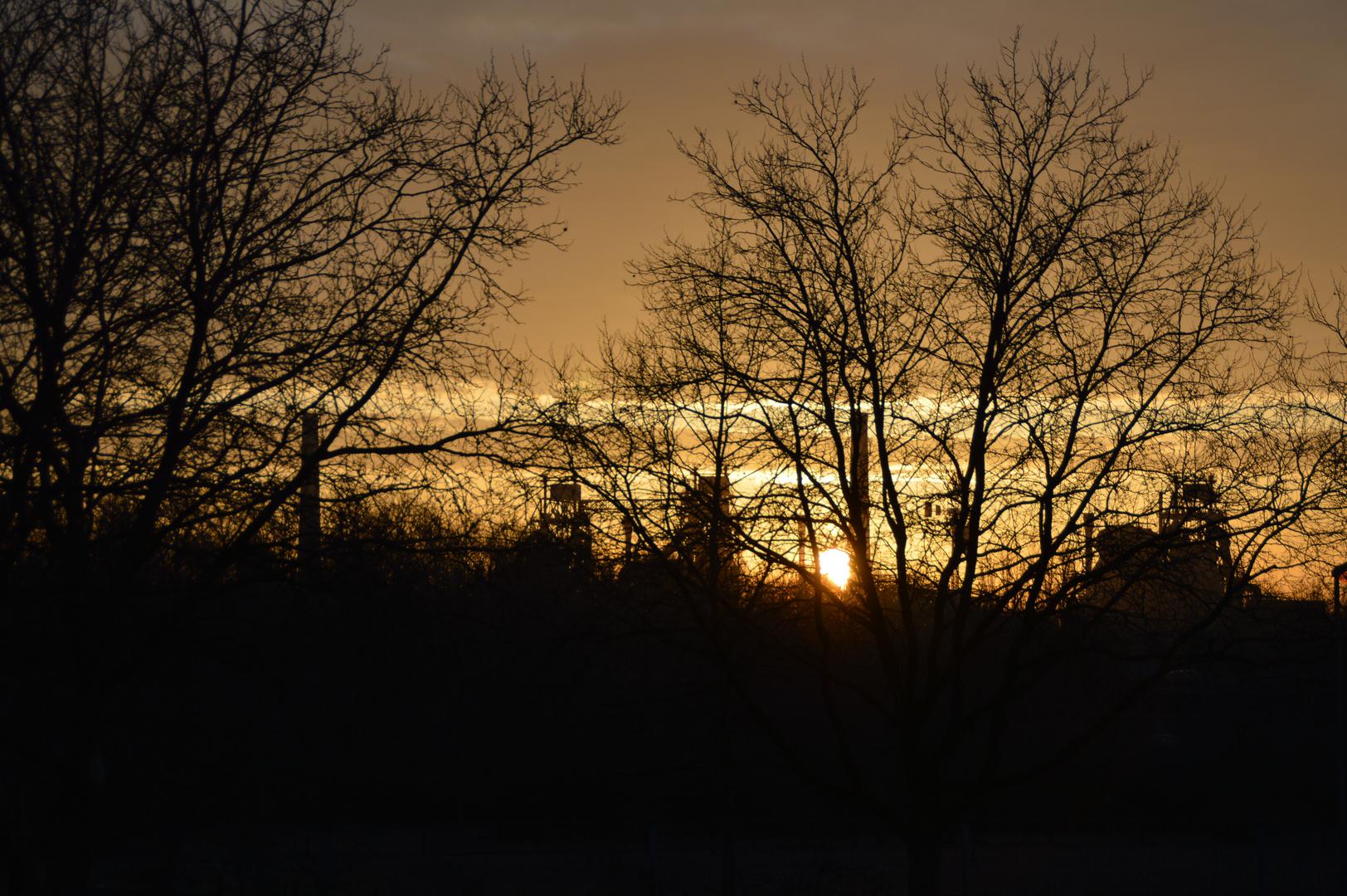 Sonnenaufgang am Landschaftspark Nord