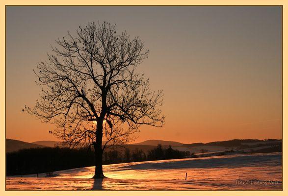 Sonnenaufgang am Mückenhof