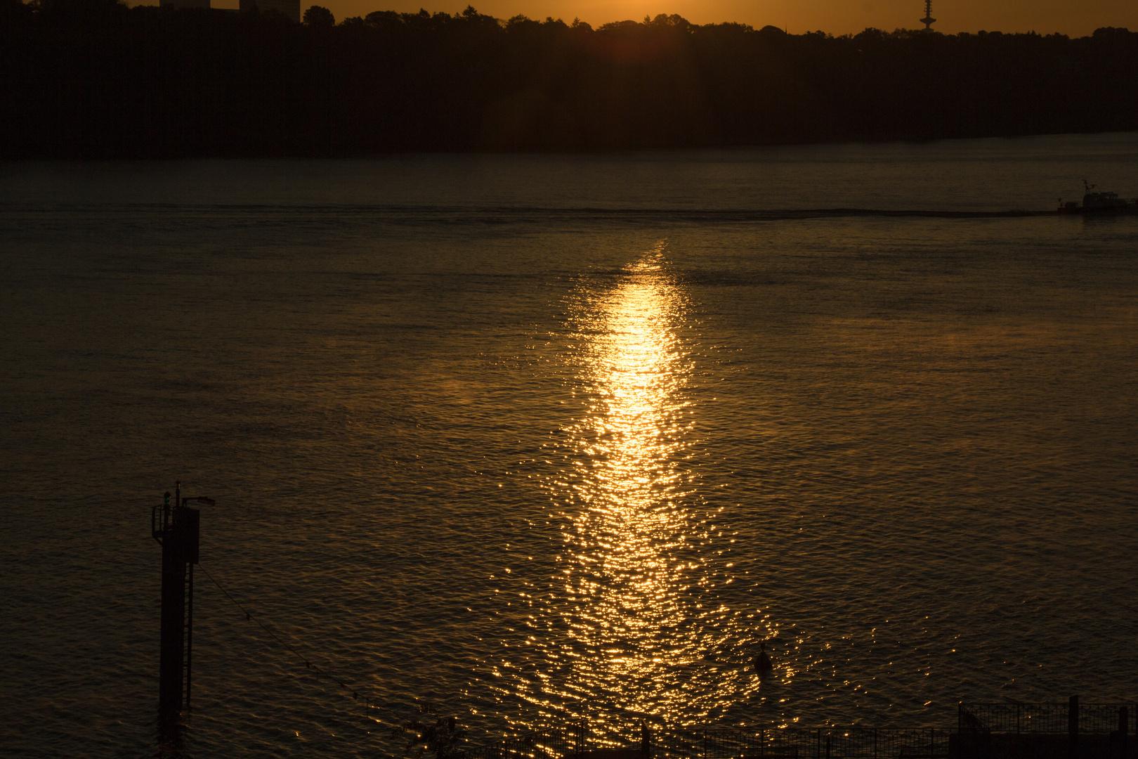 Sonnenaufgang am Rüschpark