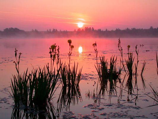 Sonnenaufgang am See....