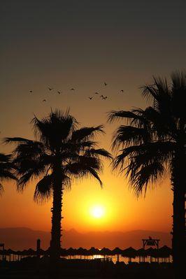 Sonnenaufgang am Strand von Torremolino-Andalusien