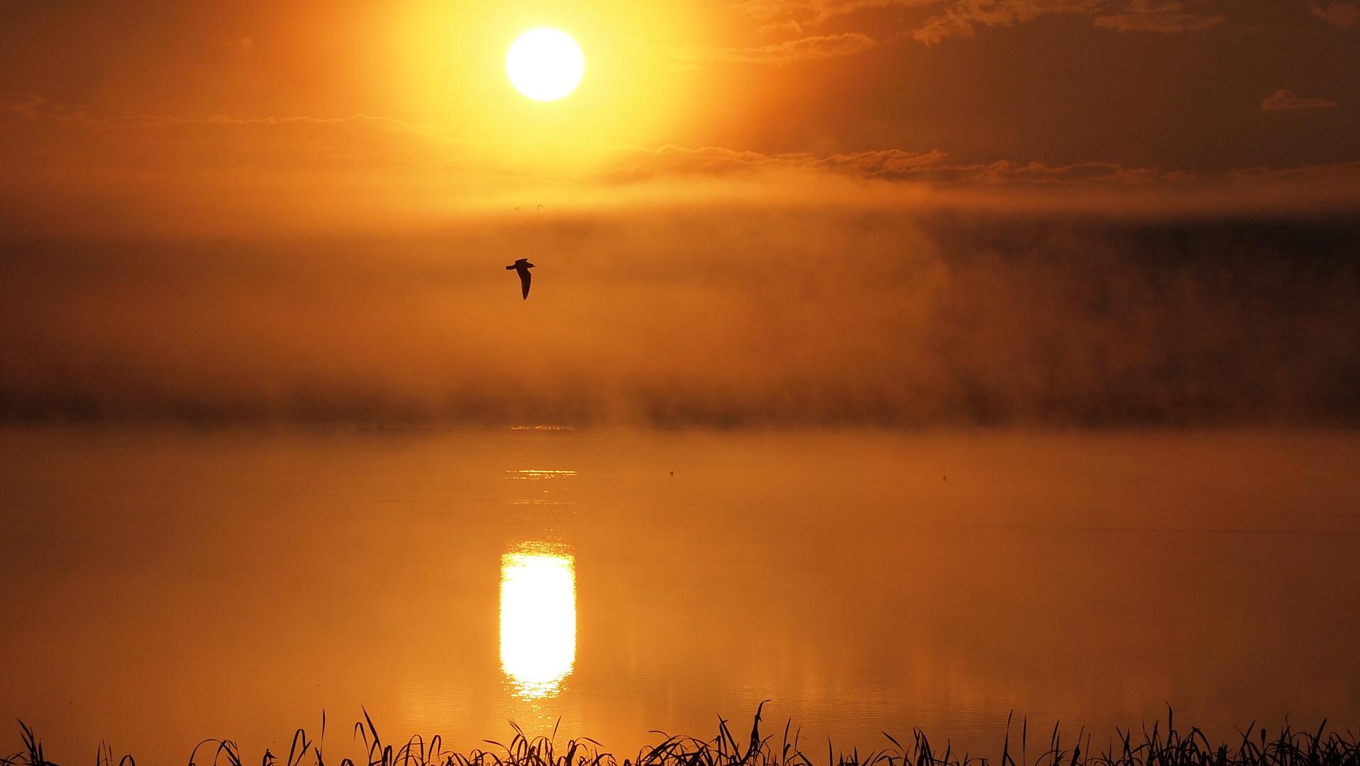 Sonnenaufgang am Strengsee