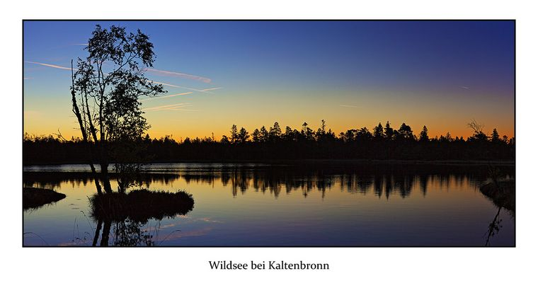 Sonnenaufgang am Wildsee bei Kaltenbronn
