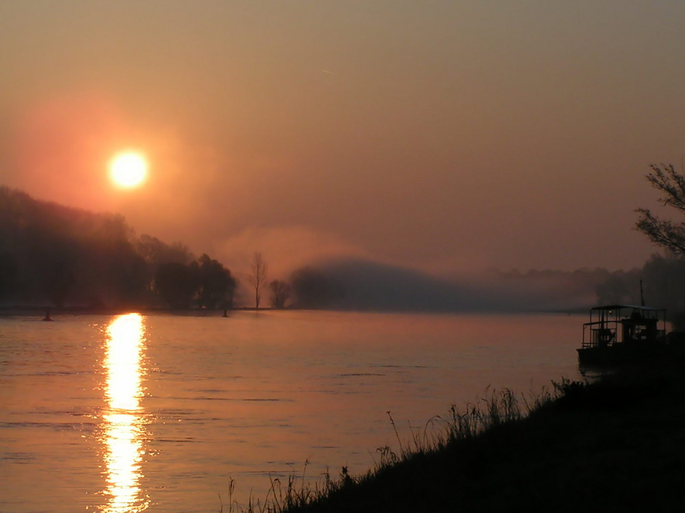 Sonnenaufgang an der Elbe mit Nebel