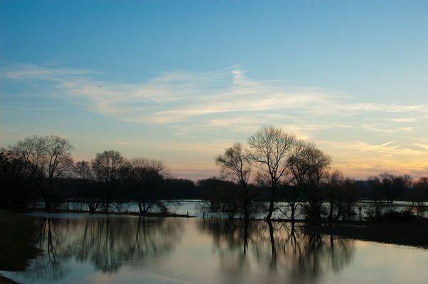 Sonnenaufgang an der Sieg bei Hochwasser