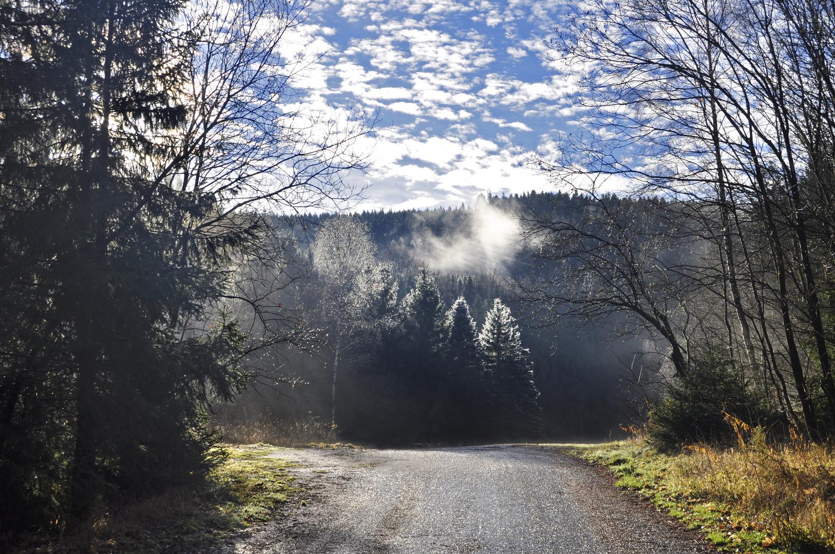Sonnenaufgang an einem kalten Wintermorgen an der Eibenstocker Talsperre