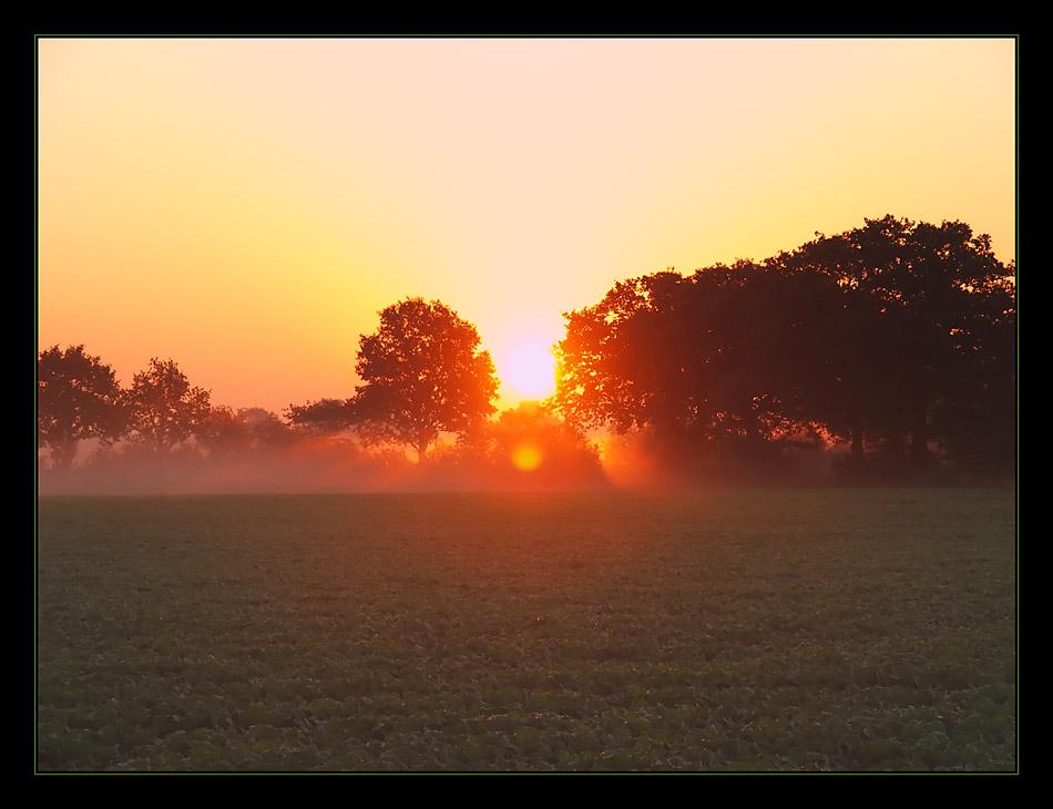 Sonnenaufgang auf dem Land Part 2