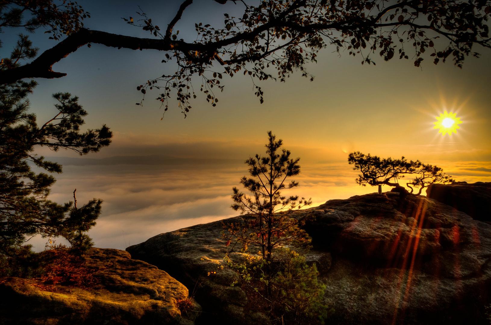 ...Sonnenaufgang auf dem Lilienstein,