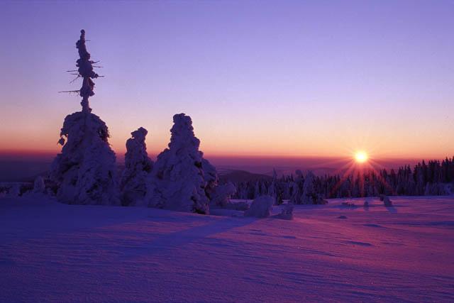 Sonnenaufgang auf der Hornisgrinde