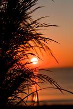 Sonnenaufgang auf Mallorca (2)