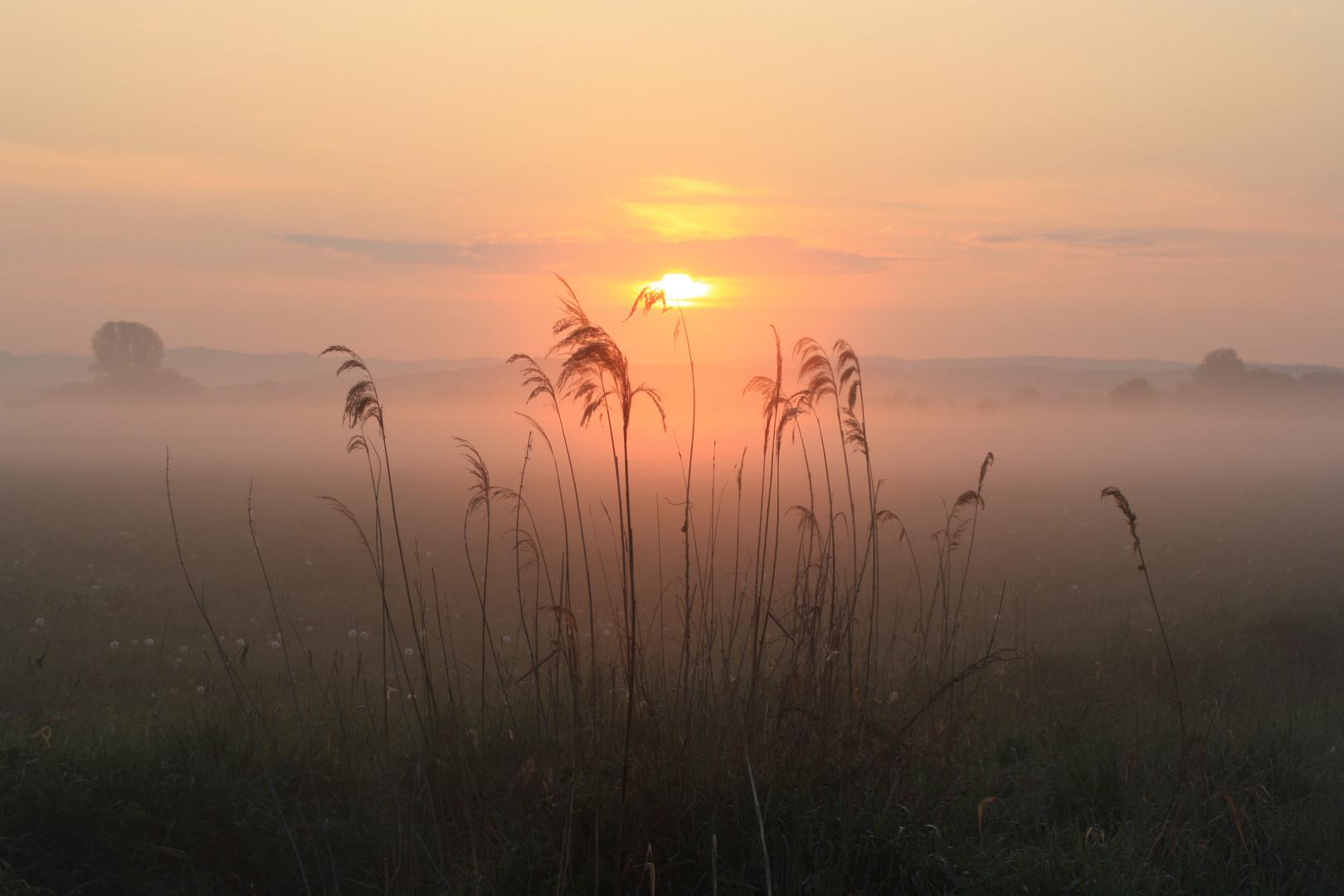 Sonnenaufgang bei Baiersdorf