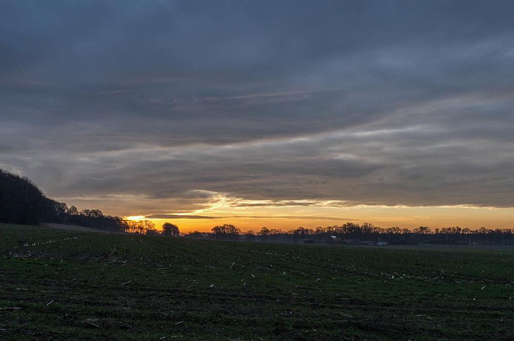 Sonnenaufgang bei Gildehaus