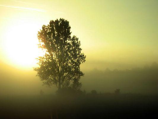 Sonnenaufgang bei Merching