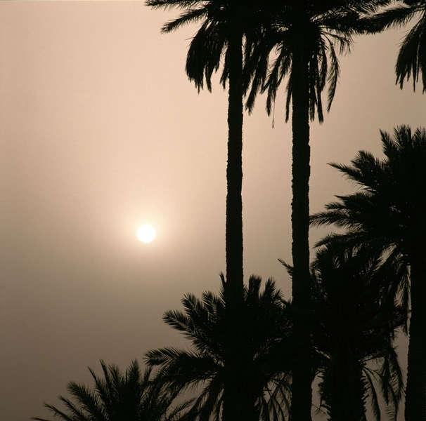 Sonnenaufgang bei Merzouga