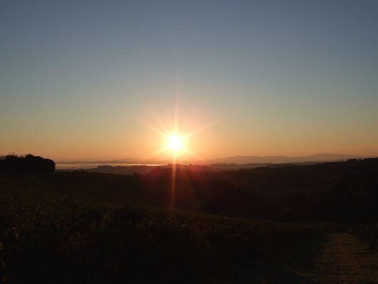 Sonnenaufgang bei Montepulciano