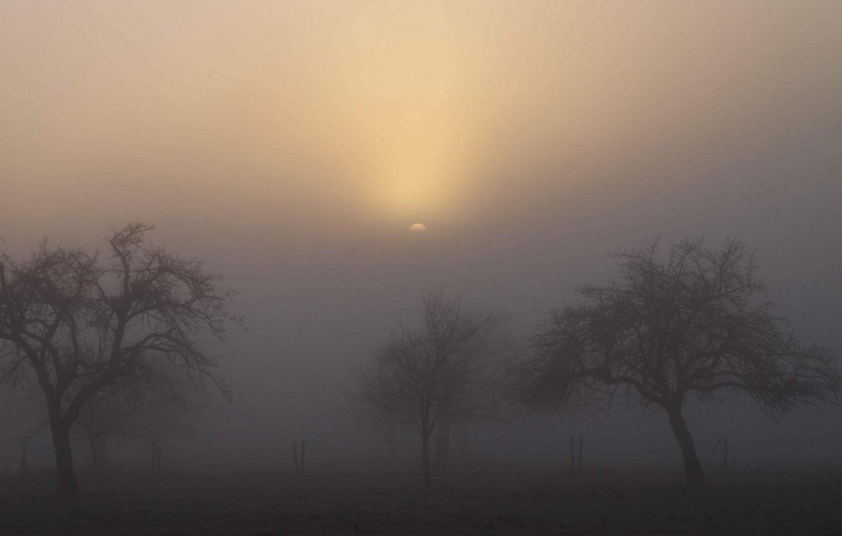 Sonnenaufgang bei Nebel
