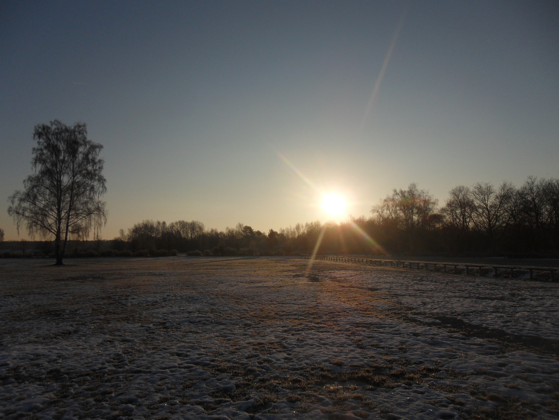 Sonnenaufgang Exerzierplatz