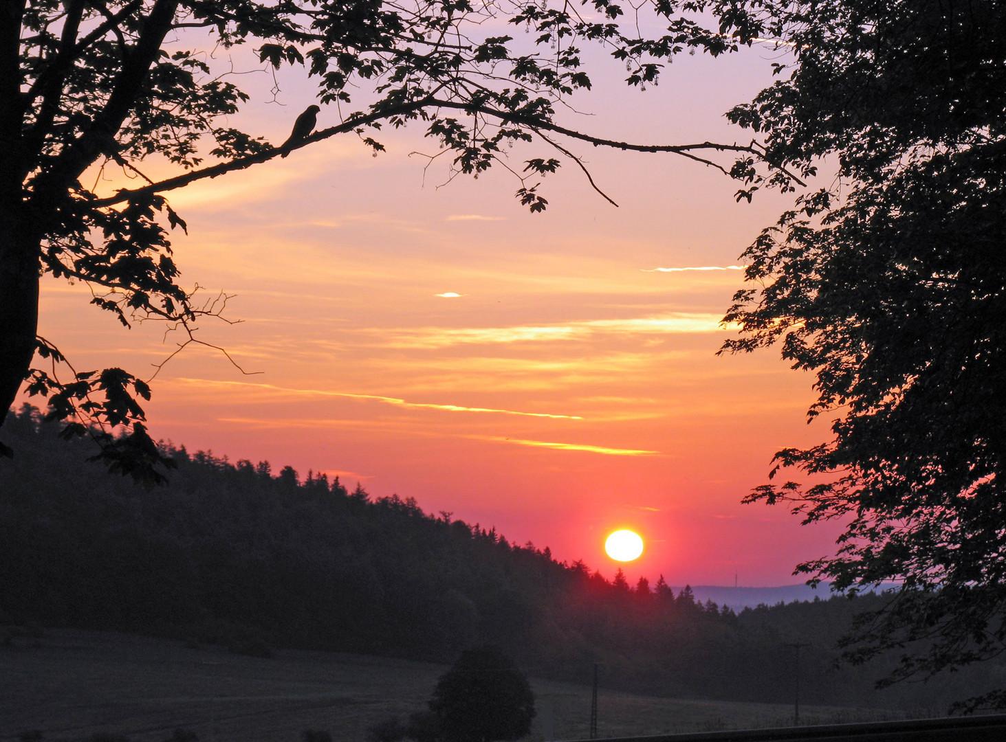 Sonnenaufgang hinter dem Dachsberg