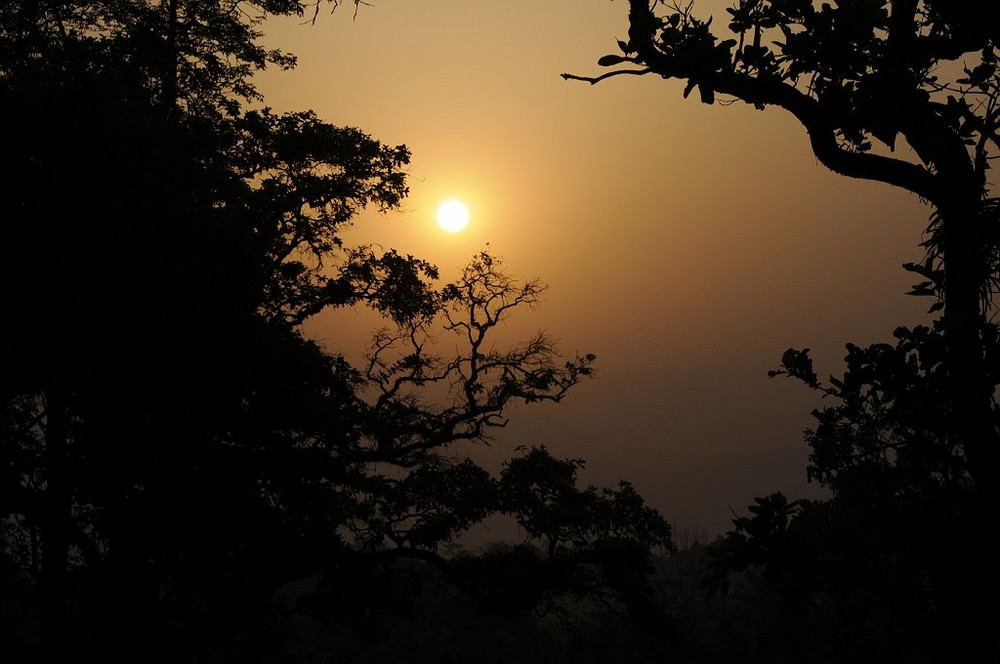 Sonnenaufgang im Chitwan Nationalpark