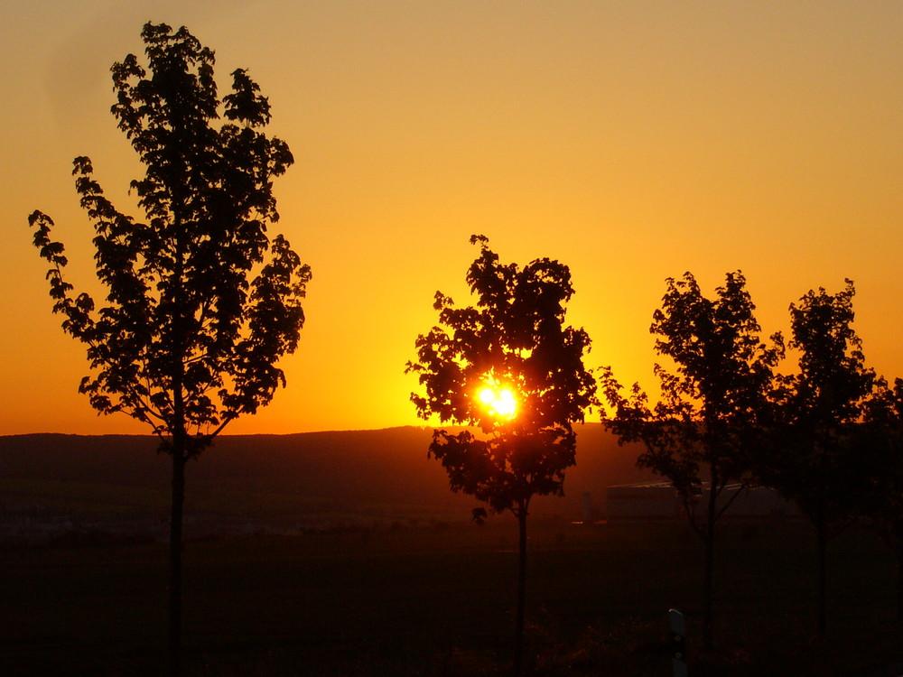 Sonnenaufgang im Eichsfeld