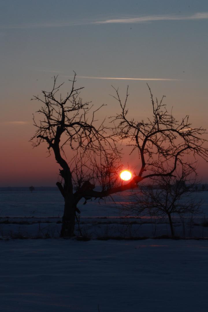 Sonnenaufgang im Harzvorland