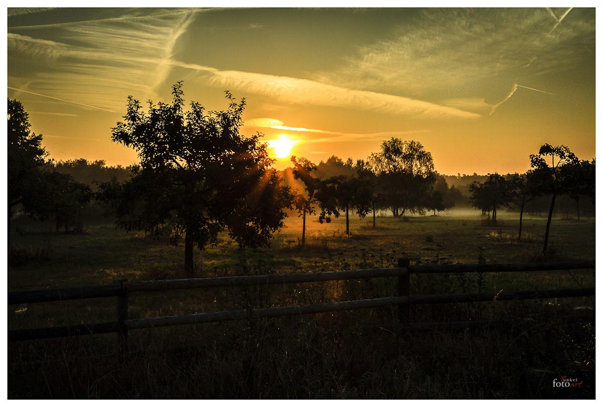 Sonnenaufgang im Herbst 2012 I