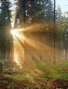 Sonnenaufgang im Hirschgrund bei Hinterrod 03