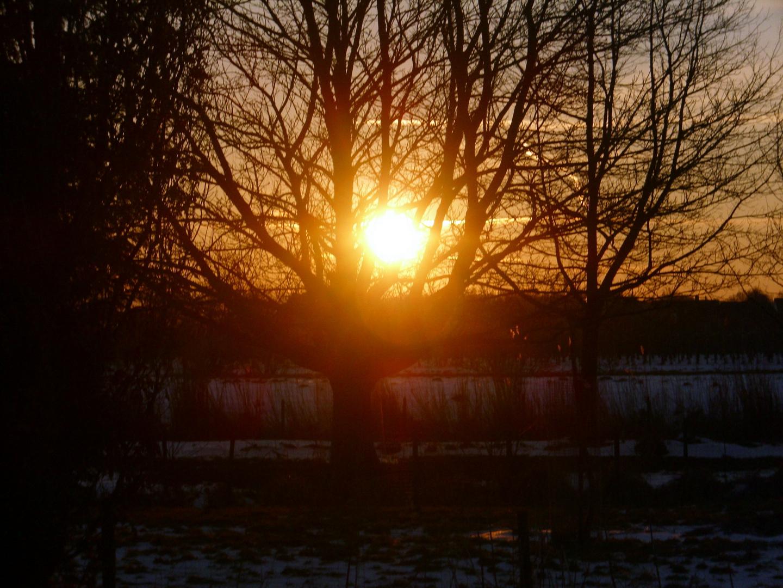 Sonnenaufgang im Kehdinger Land