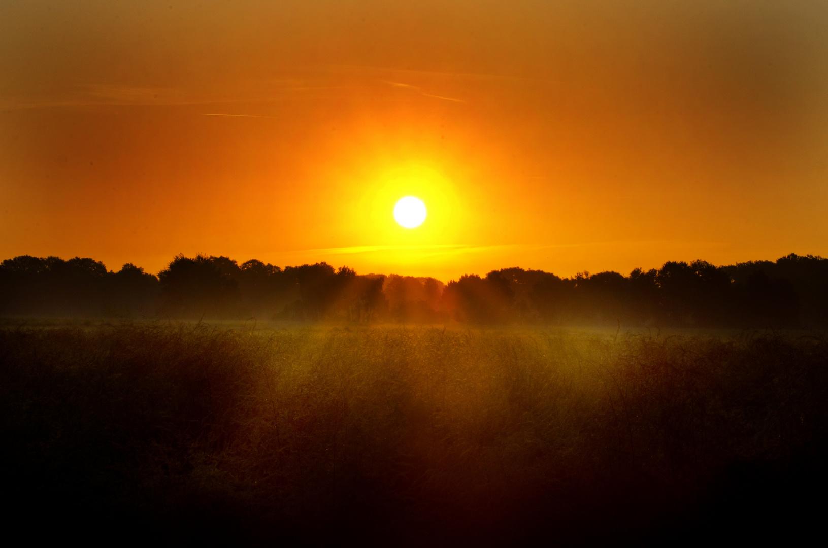Sonnenaufgang im Kuhlenvenn