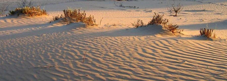Sonnenaufgang im Kuiseb Revier-Namibia->Ausschnitt