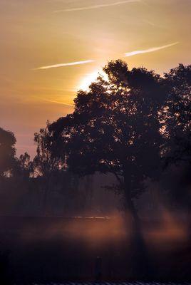 Sonnenaufgang im Leichten Nebel