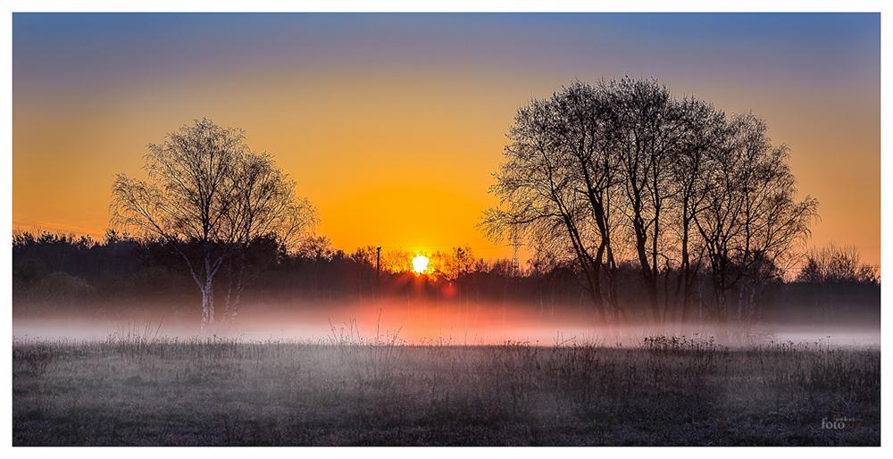 Sonnenaufgang im Naturschutzgebiet nähe Obertshausen