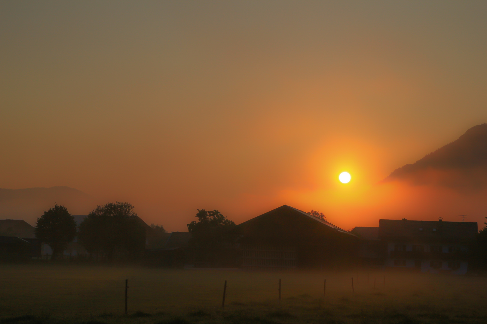 Sonnenaufgang im Nebel der Isar