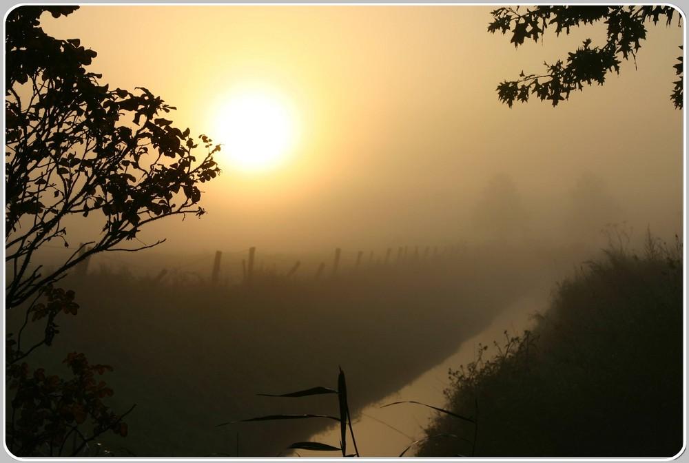 Sonnenaufgang im Novembernebel