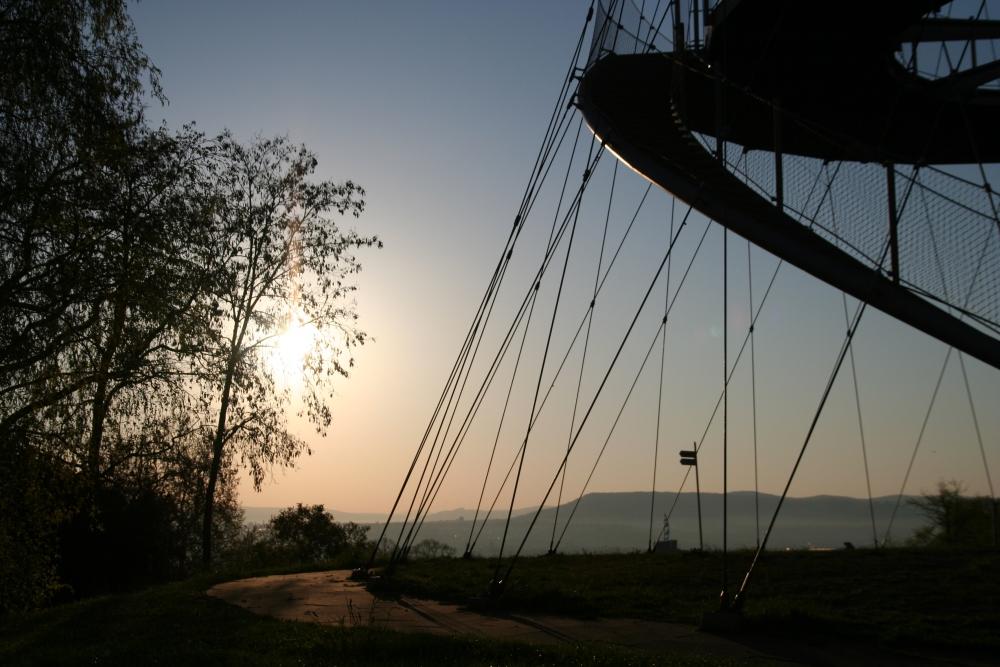 Sonnenaufgang im Park II