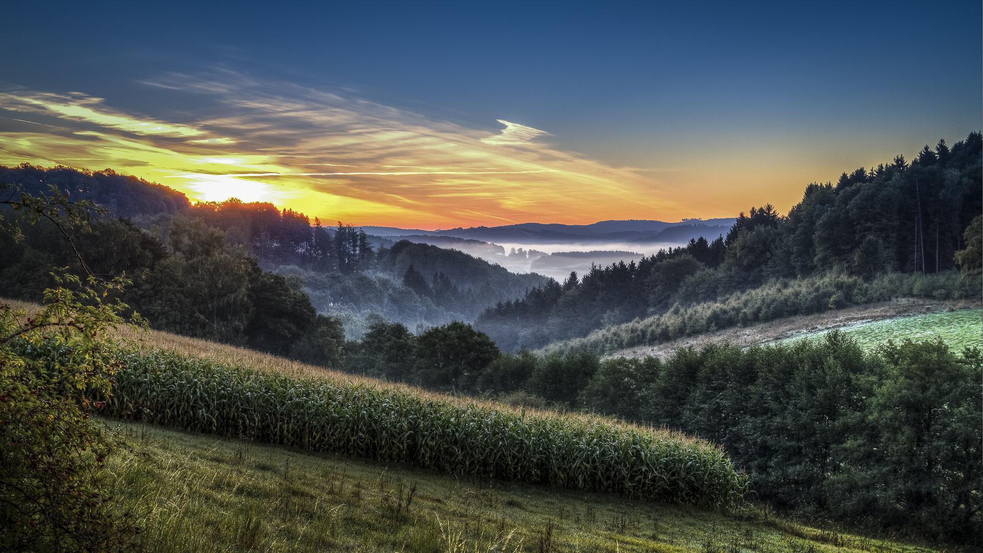 Sonnenaufgang im Sauerland