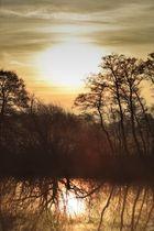 Sonnenaufgang im Teufelsmoor II
