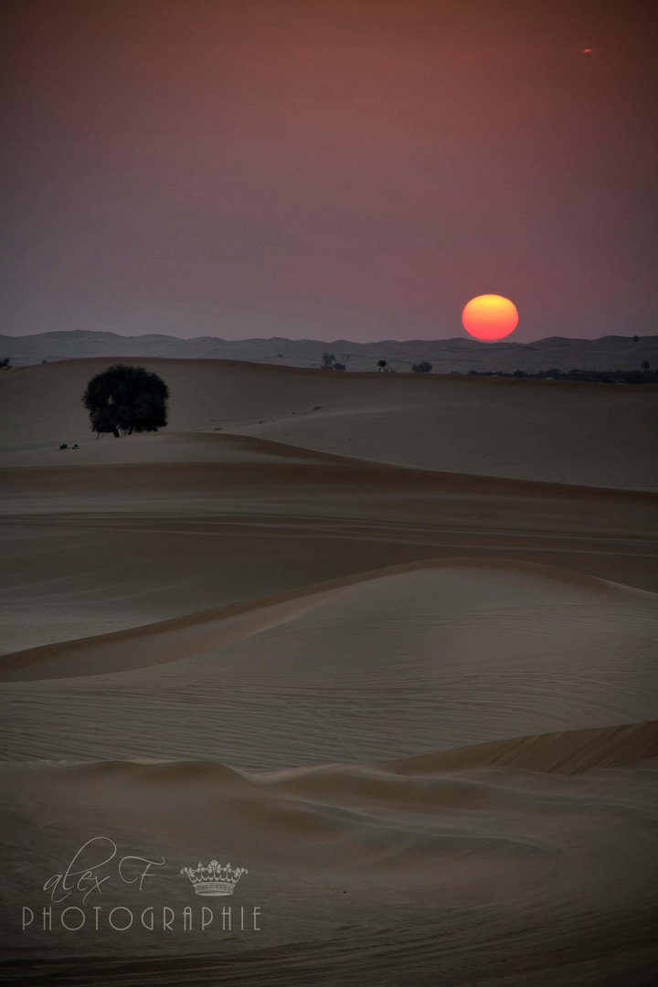 Sonnenaufgang in Abu Dhabi
