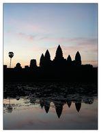 Sonnenaufgang in Angkor Wat - Siem Reap, Kambodscha