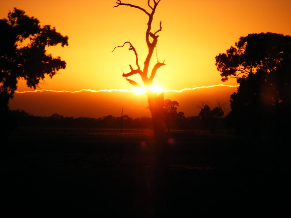 Sonnenaufgang in Australien zwischen Bendigo und Sydney