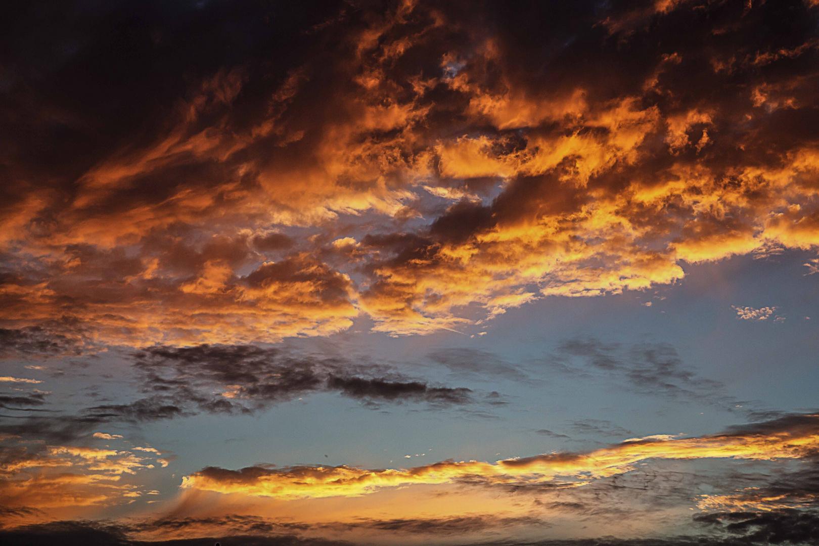 Sonnenaufgang in Beindersheim