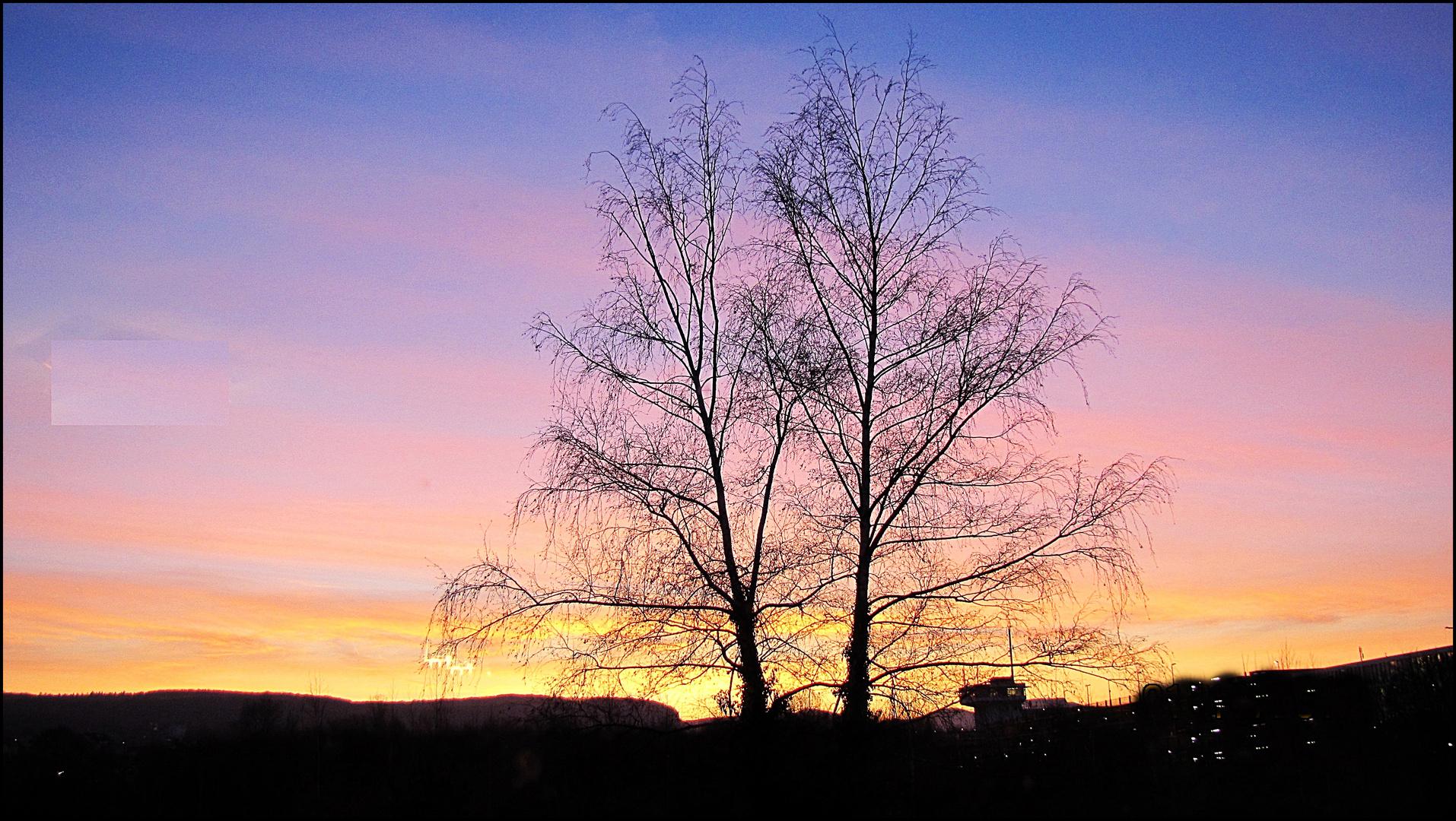 Sonnenaufgang in Beuel