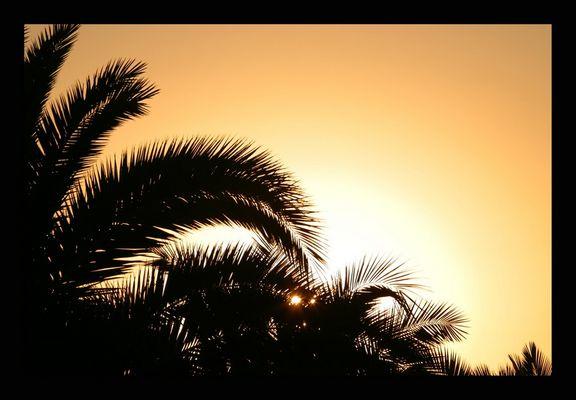 Sonnenaufgang in Cala Mandia