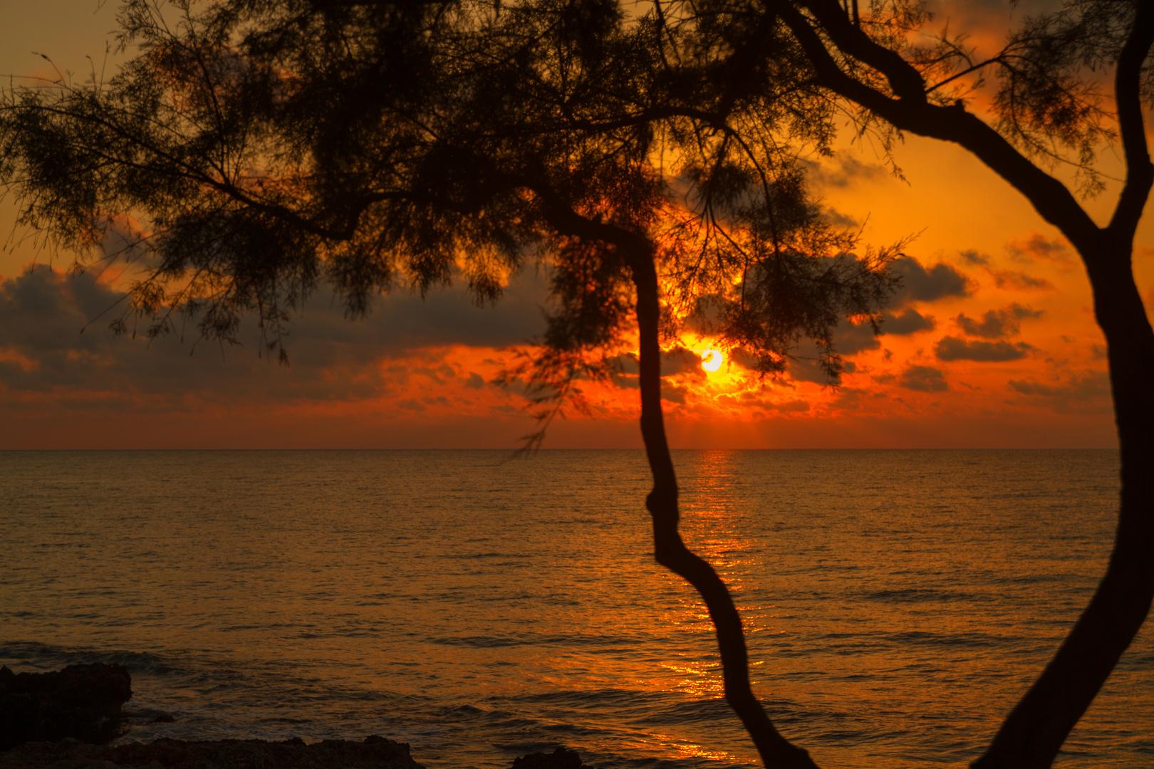 Sonnenaufgang in Cala Millor